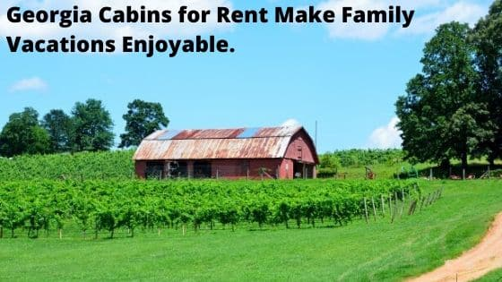 Georgia Cabins for Rent Make Family Vacations Enjoyable